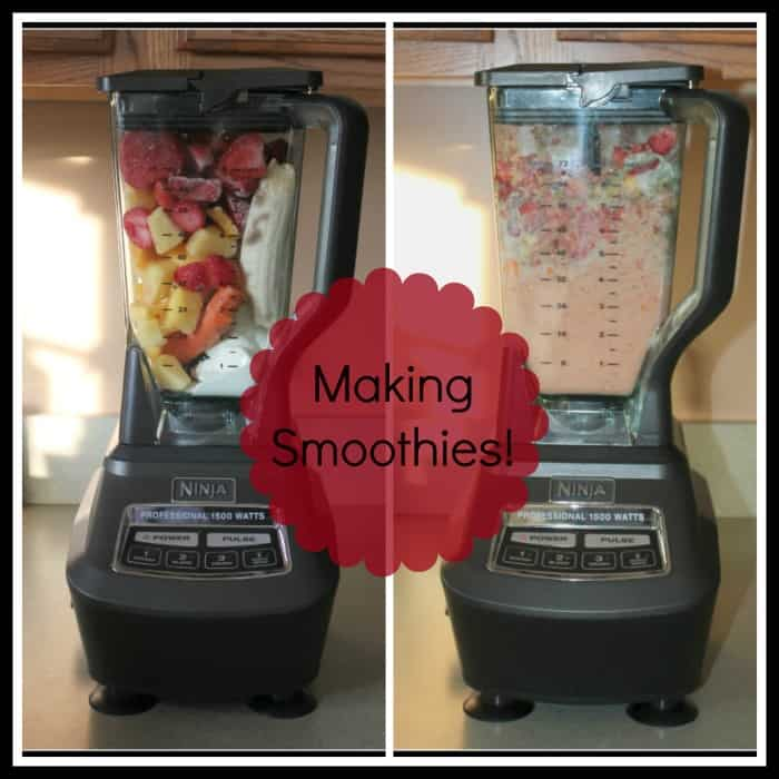 Ninja Mega Kitchen System Review and #Giveaway! - Thrifty ...