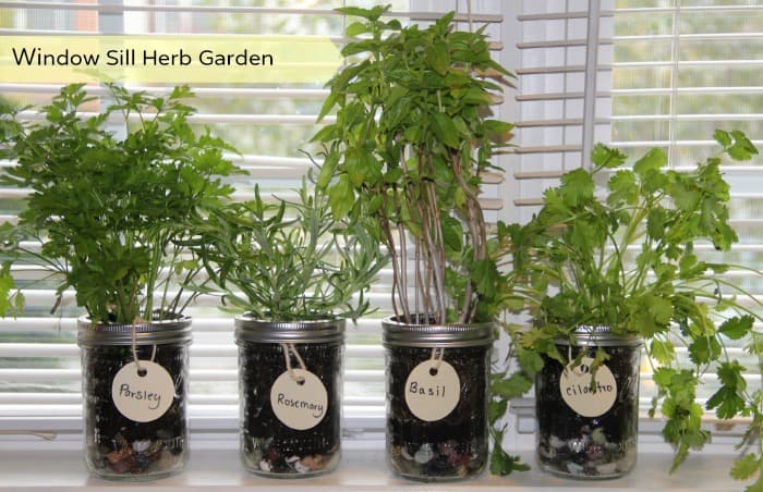 DIY Window Herb Garden