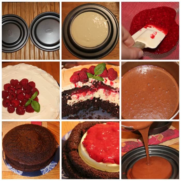Chocolate Raspberry Magic Cake