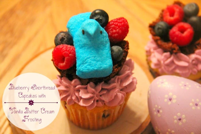 Blueberry Shortbread Cupcakes With Vanilla Butter Cream Frosting & Decorative Chocolate Coconut Nests