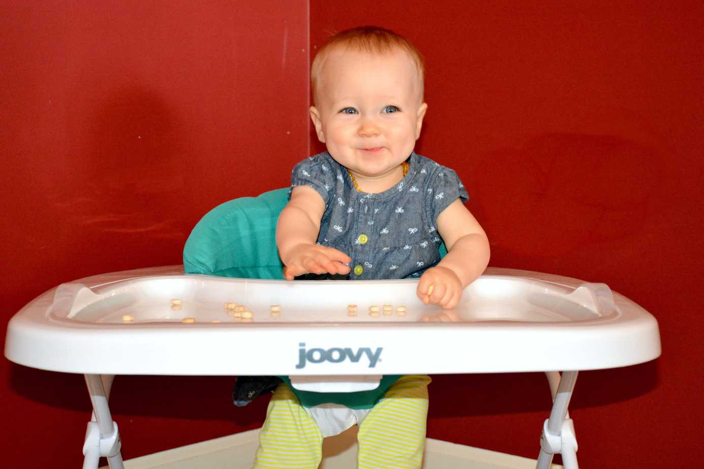 Everything You Need to Know about the Joovy Spoon
