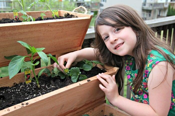 Let's Get Gardening With RopedOnCedar!