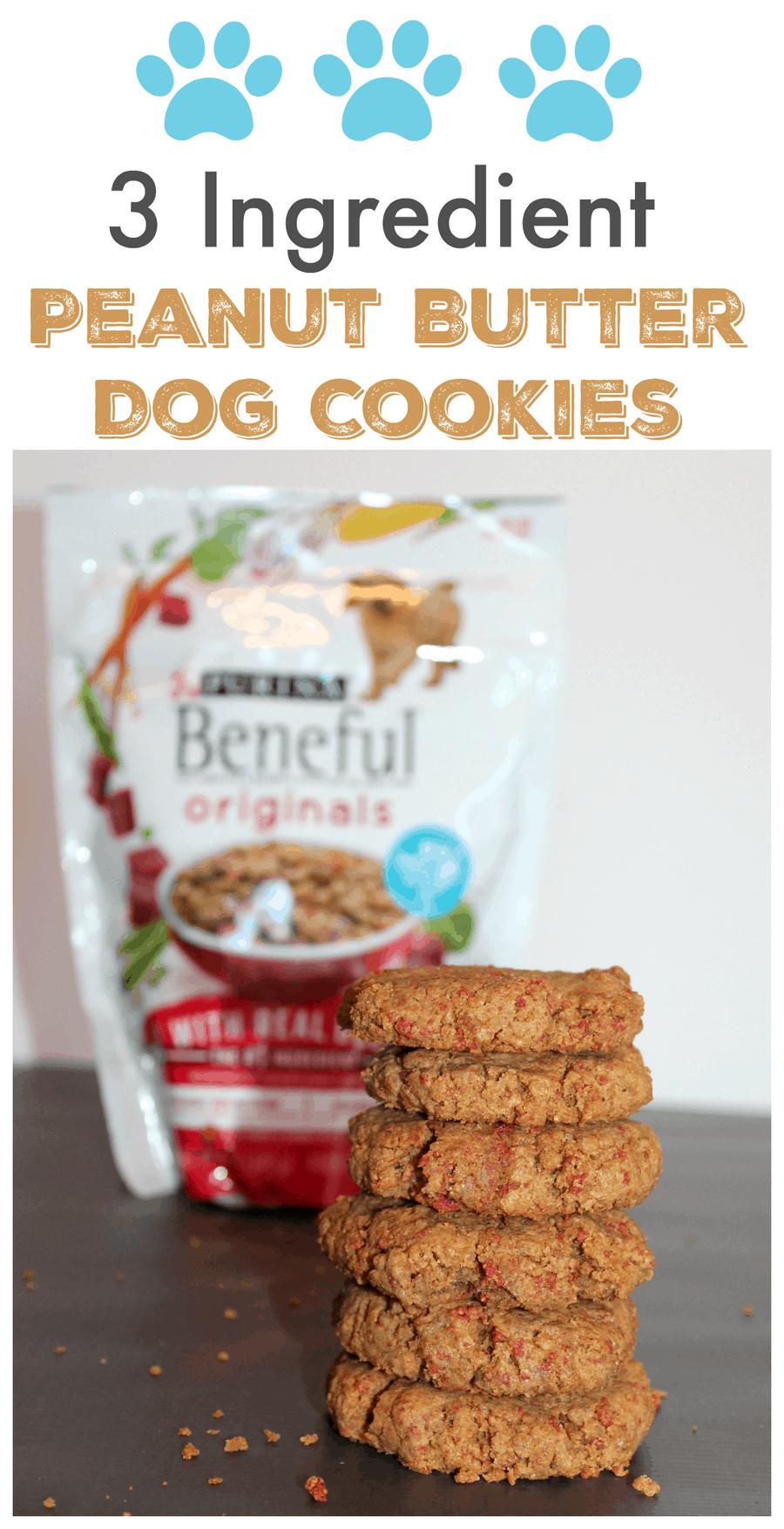 3 Ingredient Dog Cookies