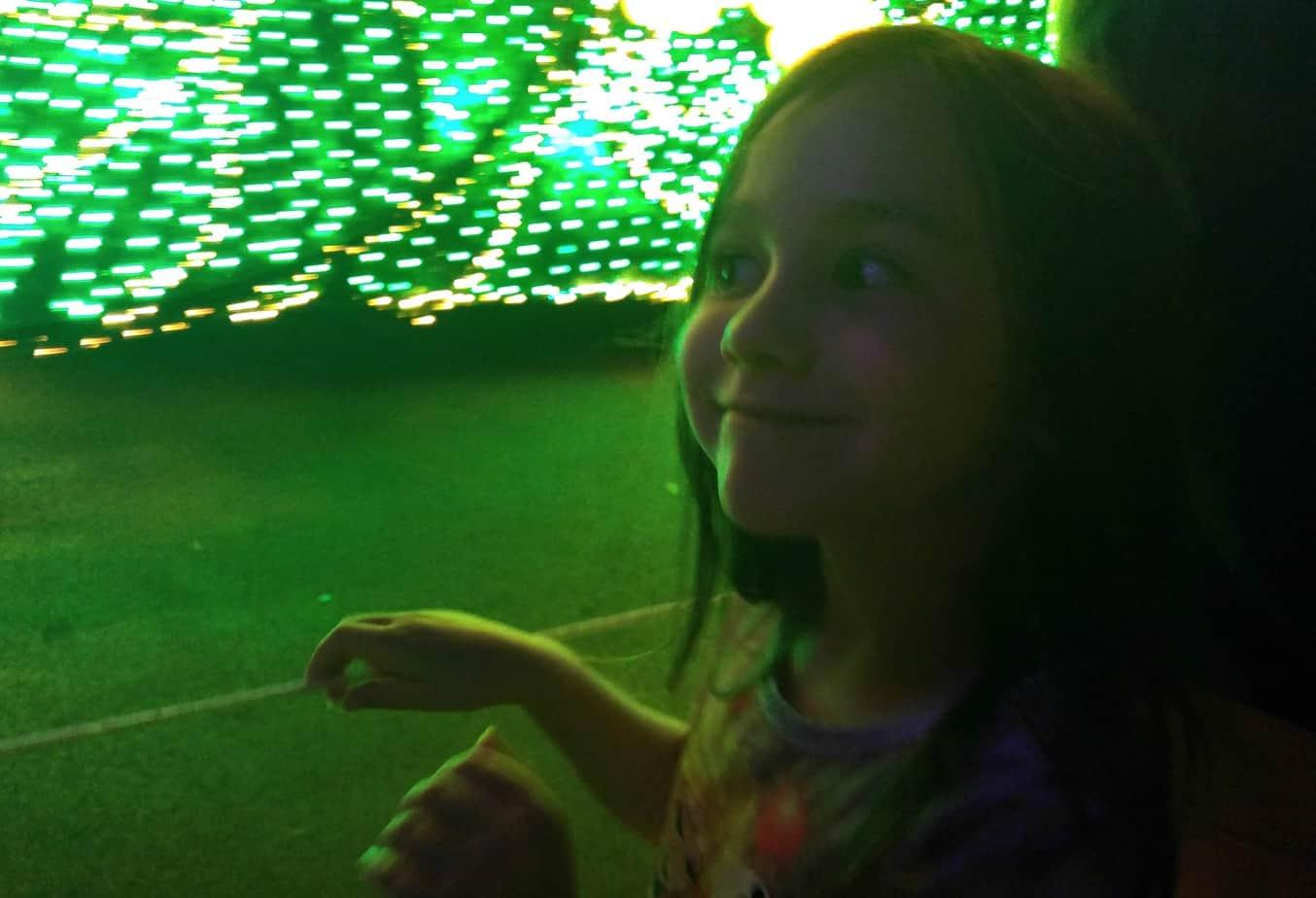 Light Show at Disney