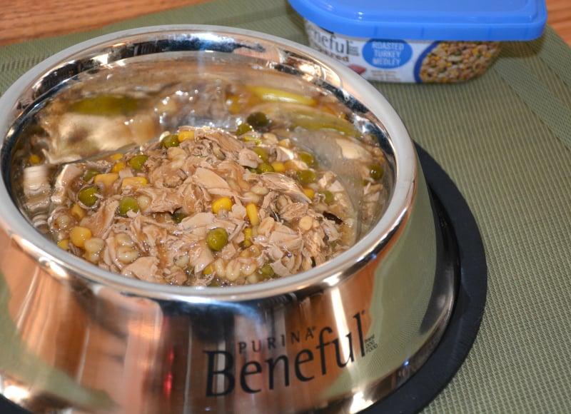 beneful-turkey-wet-dog-food
