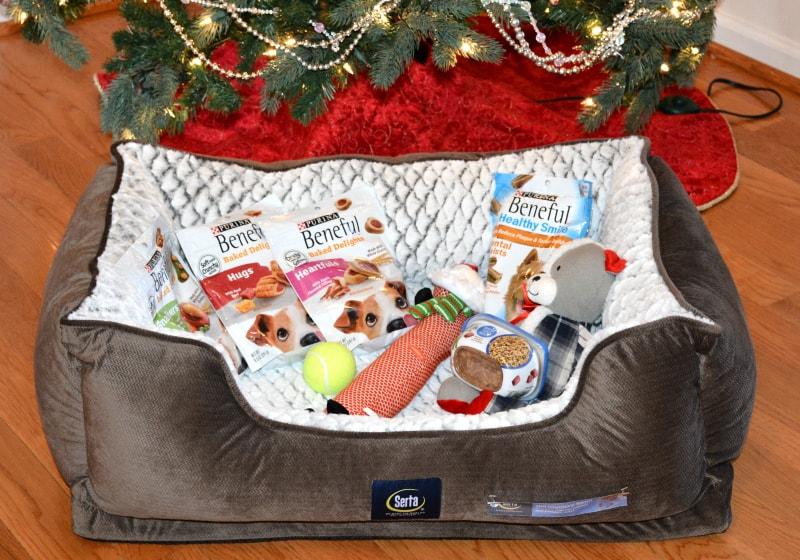 christmas-gift-for-dog