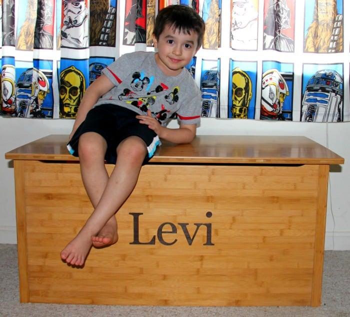 Toy Levi 2
