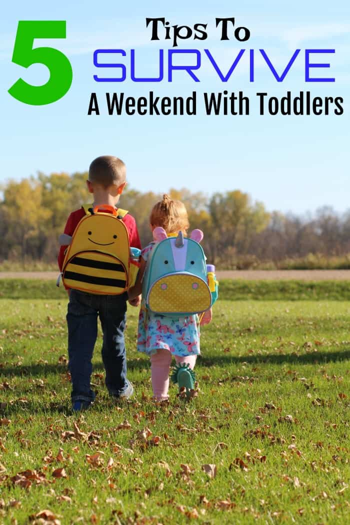 5 Tips To Survive A Weeked With Toddlers