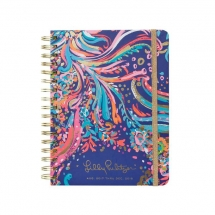 lilly-planner-1