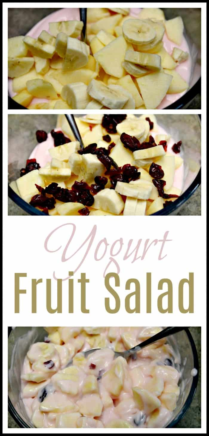 Easy Yogurt Fruit Salad Recipe - 4 Ingredients!
