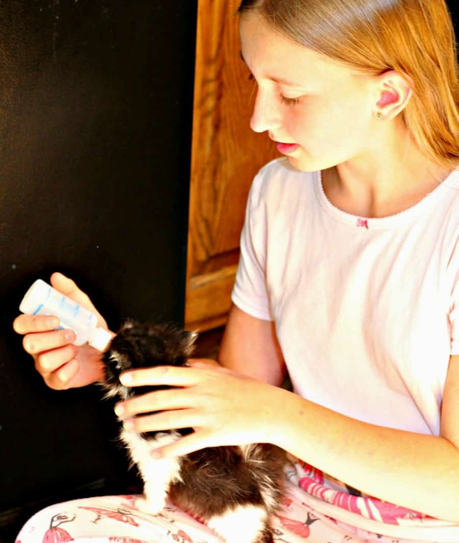 Personalized Pet Gifts + Benefits To Owning A Pet