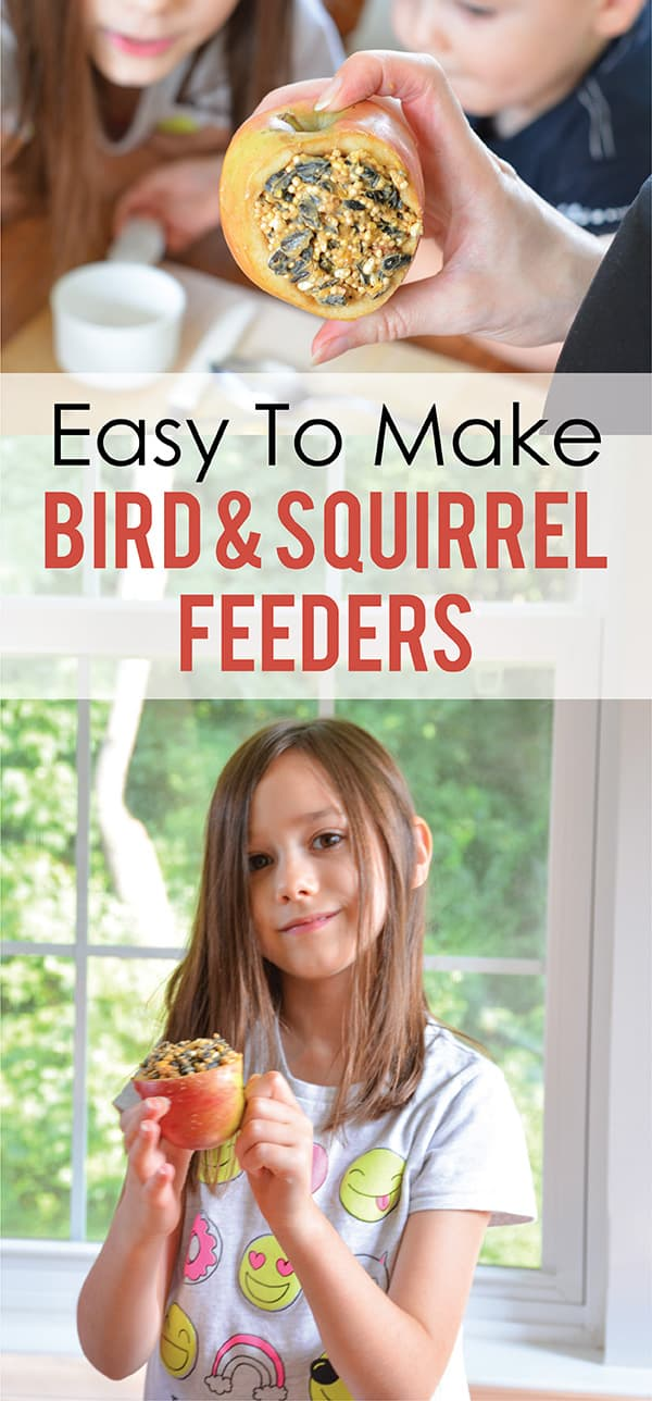 Easy To Make Bird and Squirrel Feeders