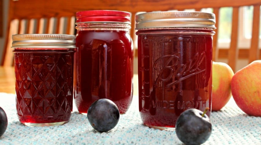 Easy Plum Apple Jelly Recipe For Canning Or Freezing