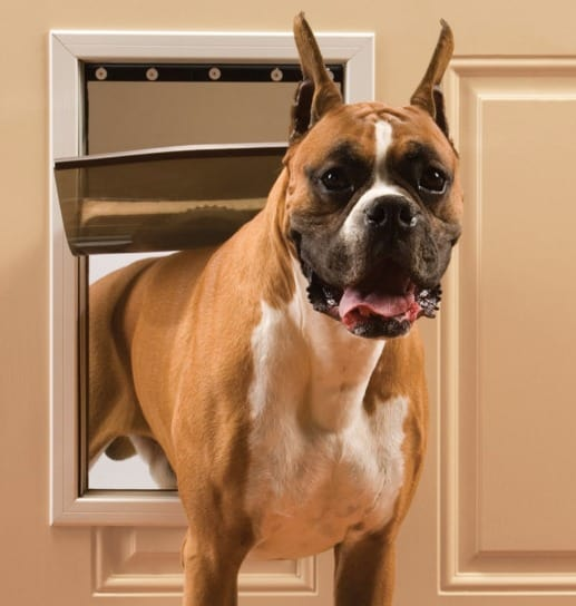 PetSafe Freedom® Aluminum Pet Door