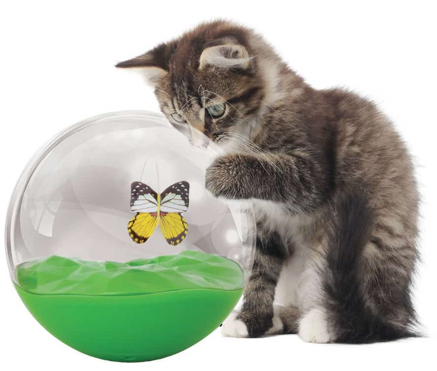 Petmate Jackson Galaxy Butterfly Ball Cat Toy