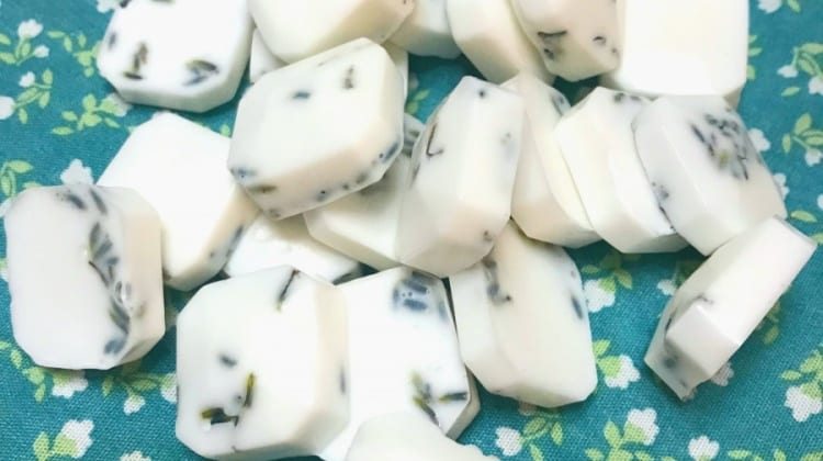 Comforting Eucalyptus Soap Melts