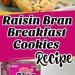 Raisin Bran Breakfast Cookies