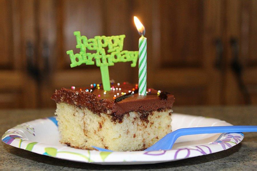Happy Birthday Cake - Happy 16th BIRD-day, Pigeon!