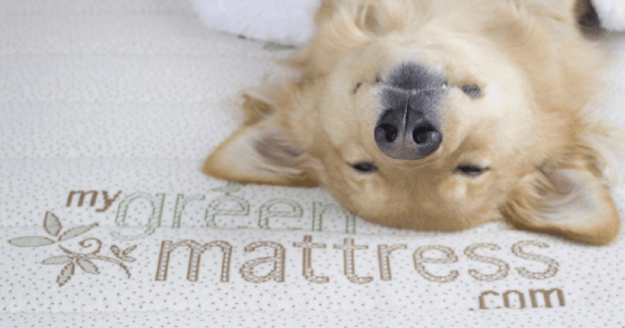MyGreenMattress.com - what moms really want for mother's day