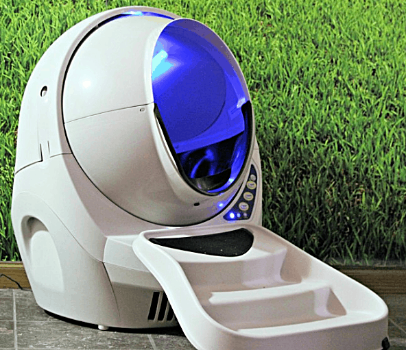 What You Need To Know Before Getting A House Cat - Litter Robot