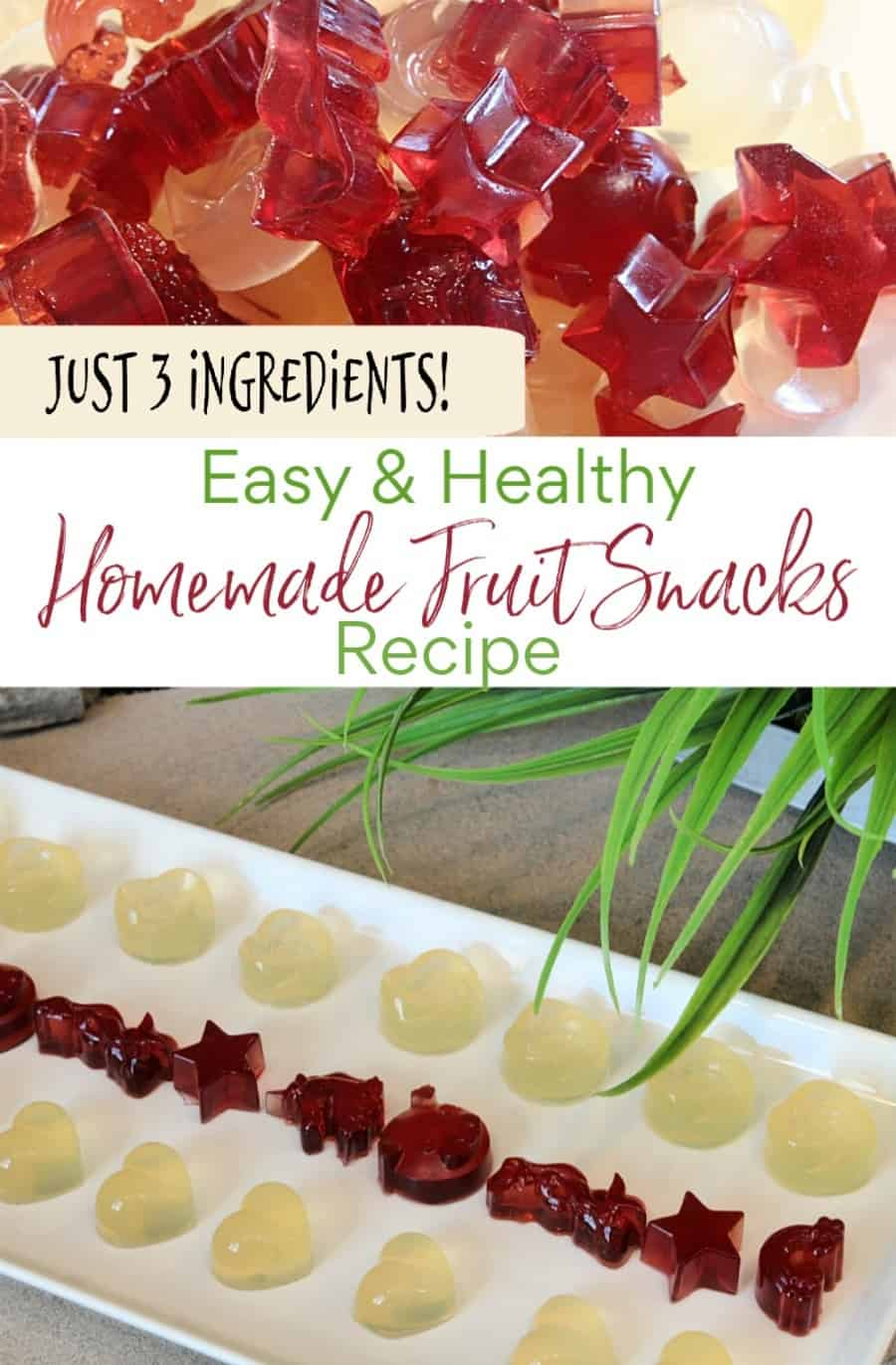 Easy & Healthy Homemade Fruit Snacks Recipe + Why You Need To Try Zahler's New Gummies