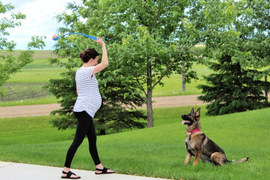 Keep Your Dog Busy Outside This Summer