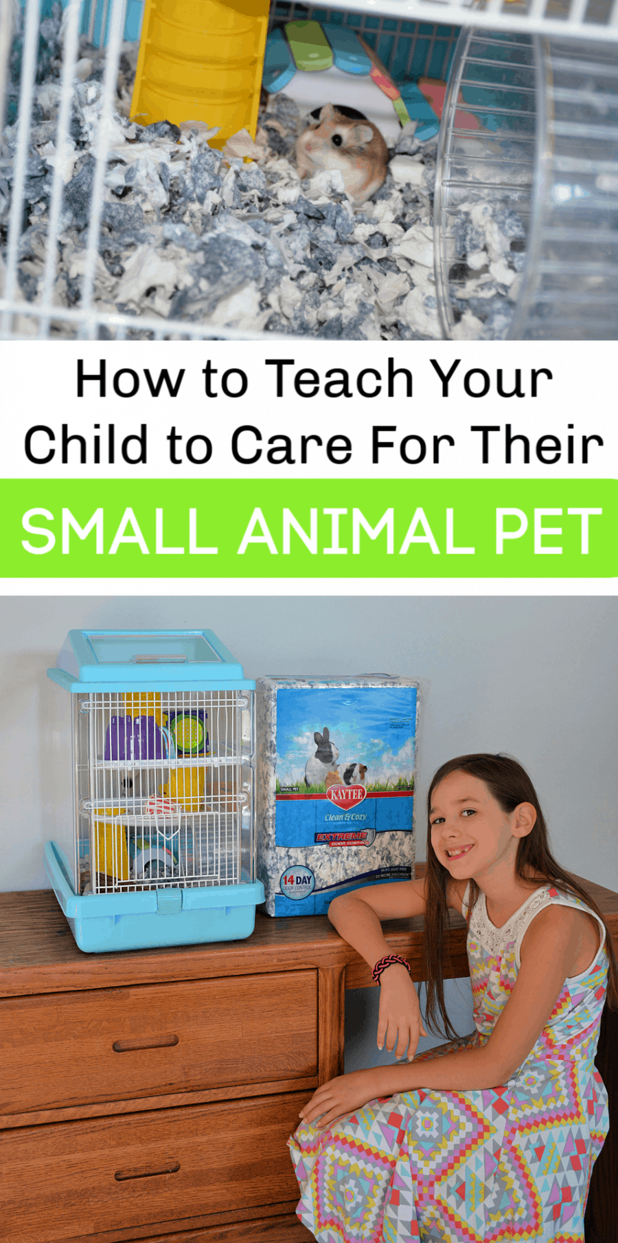 How to Teach Children to Care for Small Animals