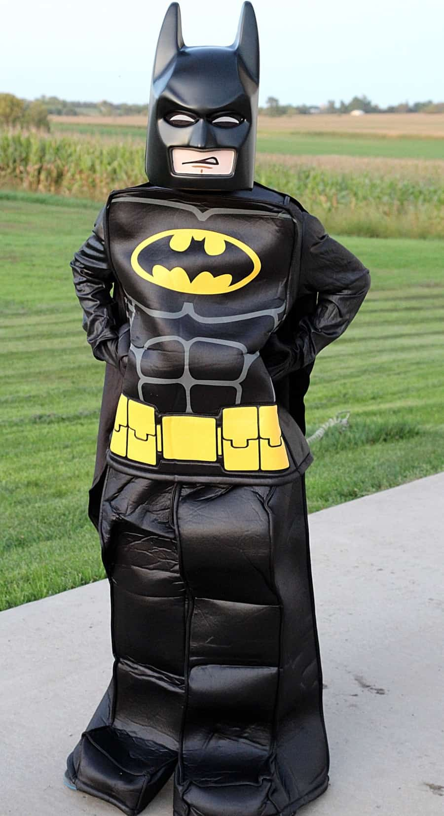 Chasing Fireflies Unique Halloween Costumes For Kids LEGO Batman