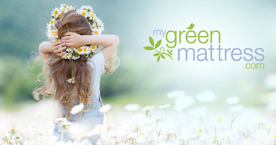 Kiwi and Pure Echo Comparison - Give The Gift Of A Great Night's Sleep With MyGreenMattress