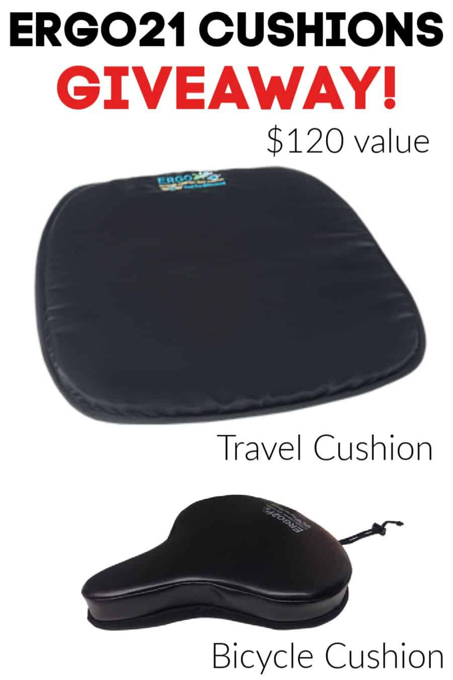 Ergo21 Awesome Comfort Cushions Giveaway