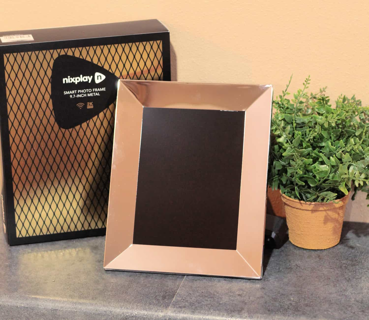 photo frame, photo box and plant