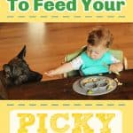 Easiest Way to Feed Your Picky Eaters
