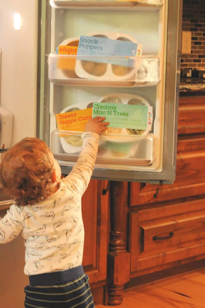 toddler getting food from fridge