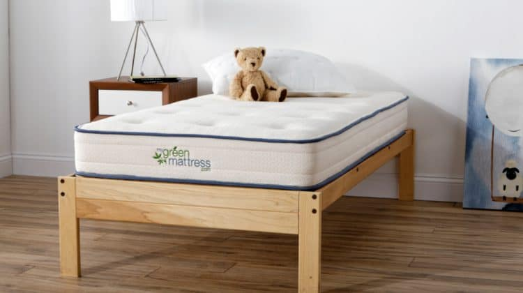 bed with teddy bear - Give The Gift Of Safe Sleep With MyGreenMattress Kiwi Mattress