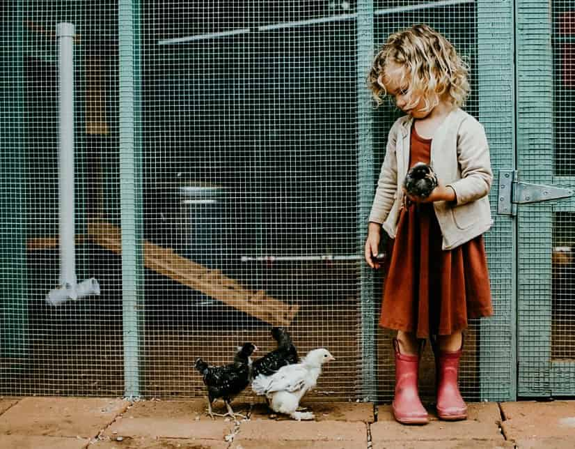 girl by chickens - LONECONE Kids Boots Giveaway