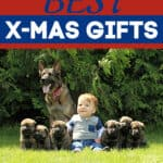 The Best X-Mas Gifts for Dogs