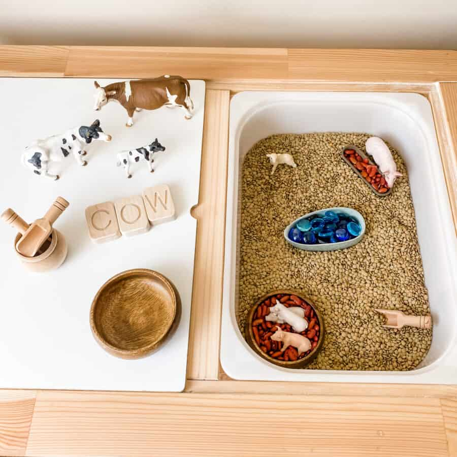 lentils and kidney beans sensory play