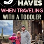 Family Photo 5 Must Have When Traveling With A Toddler