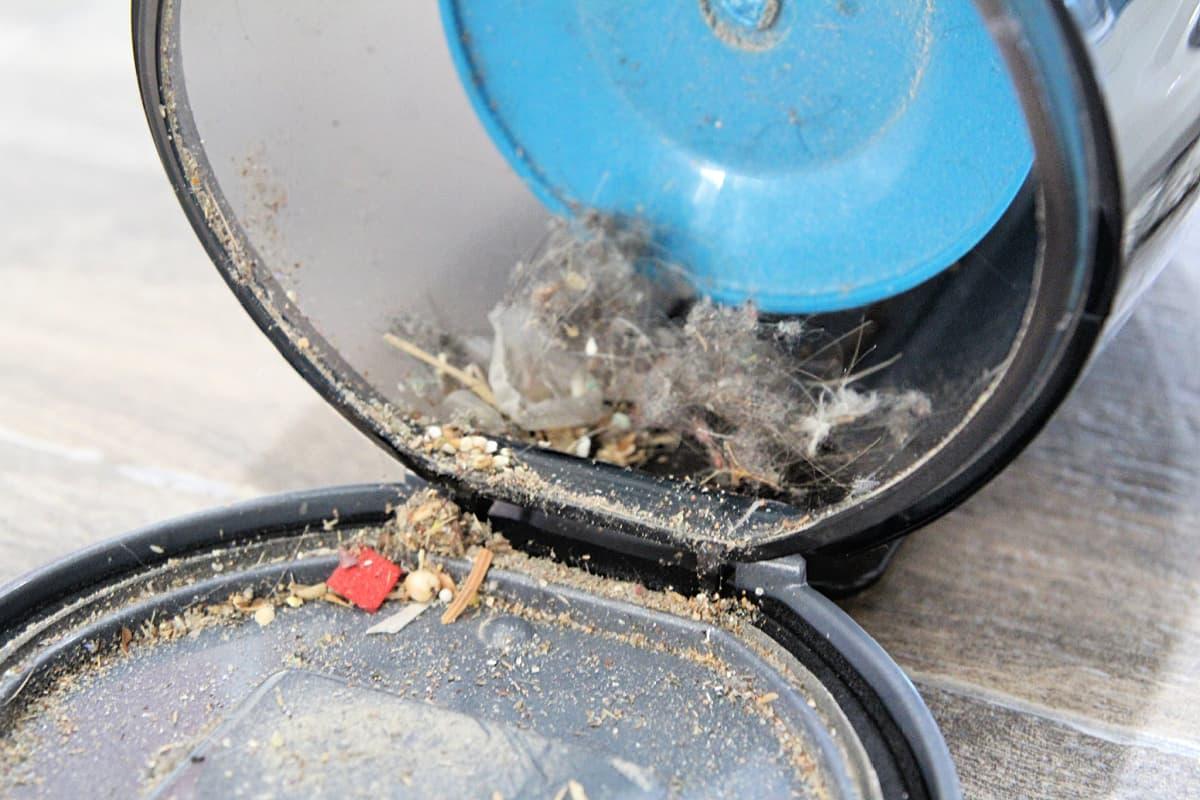 vacuum dirt canister - Black + Decker Steam N' Vac Review